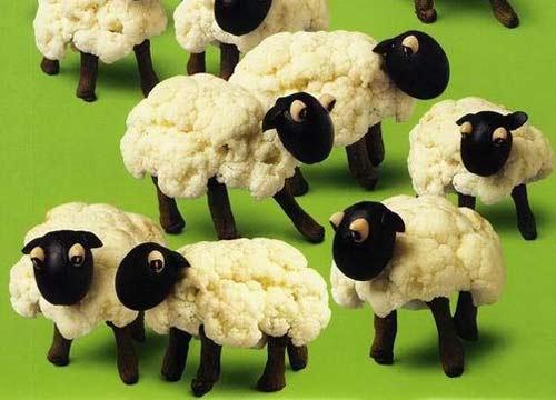 花椰菜(菜花)做的小绵羊