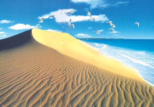 昌黎---黄金海岸-秦皇岛旅游网|北戴河旅游住宿|订房