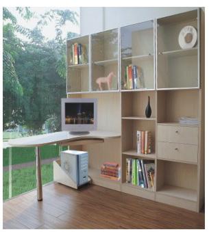 客厅书柜-壁橱系列-富奥克