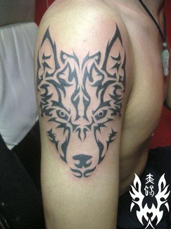 狼图腾纹身图案大全;; 纹身图案大全图片; 动物头像   纹身纹绣