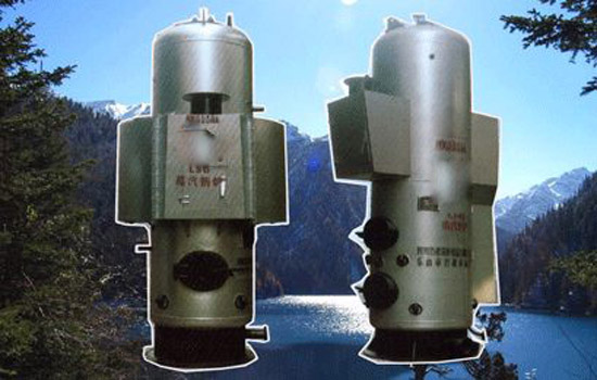 立式水管单炉排蒸汽锅炉