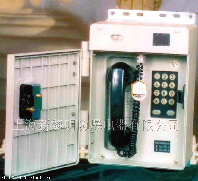 bdh防爆电话机,防爆固定电话,带耦合器防爆电话