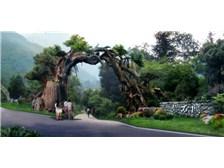 湖南省在哪能买到品质好的园林景观设计,供应
