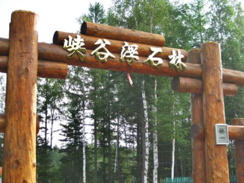 魔界风景区 长白山万达旅游度假区 长白山北坡 和平滑雪场 望天鹅风
