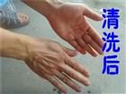 帮手洗手粉洗手后效果图