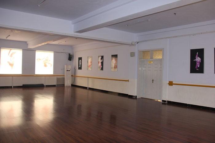 舞蹈学校_鹤壁哪家舞蹈学校最好鹤壁舞蹈培训|考级丫丫舞蹈学校|民族舞