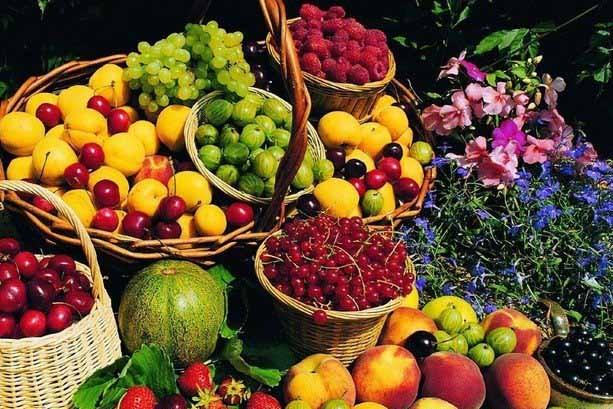 西双版纳特产之热带水果