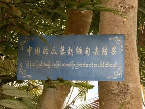 瑞丽 一寨两国_旅游景点_瑞丽旅游景点_南方旅游_云南