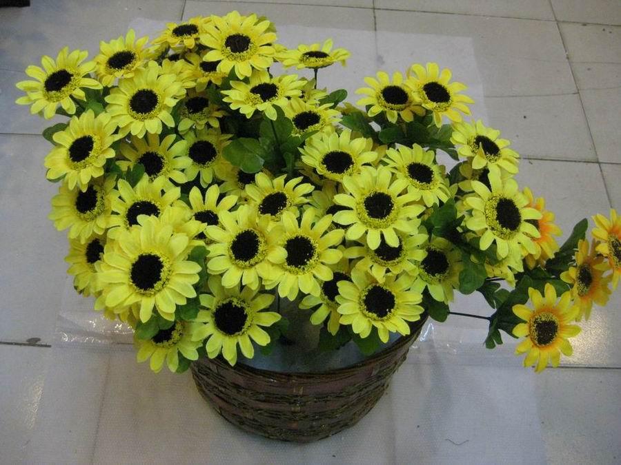 盆花图片背景素材